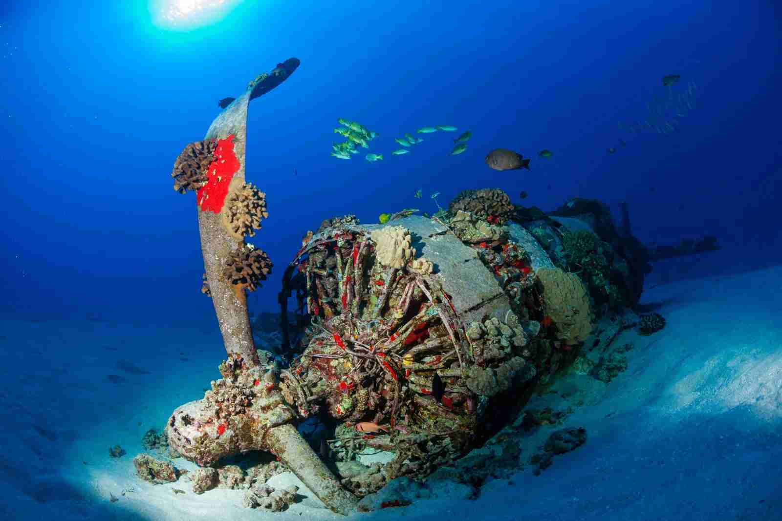 The Corsair Plane Wreck off the coast of Oahu. (Photo by Kevin Boutwell/Getty Images)