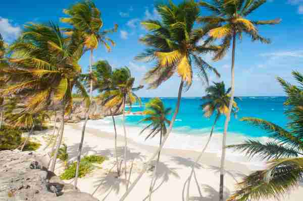 Bottom Bay is one of the most beautiful beaches on the Caribbean island of Barbados. It is a tropical paradise with palms hanging over turquoise sea. (Photo by Fyletto/Getty Images)