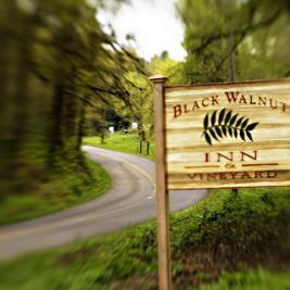 Consider staying at the Black Walnut Inn.