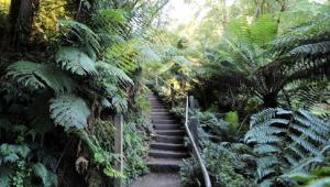 The Kokoda Track Memorial Walk takes you up 1,000 steps.