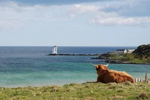 The Scottish Isle of Islay.