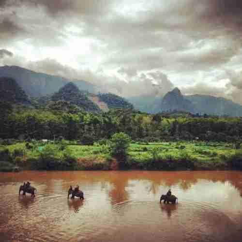 Trekking with elephants at Shangri Lao.