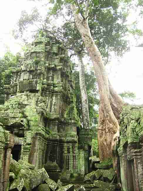 Ta Phrom, featured in the movie Tomb Raider