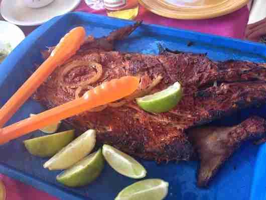 Yucatecan Tikin Xik at Playa Lancheros