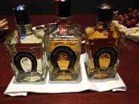 Tequila Tasting at JW Marriott