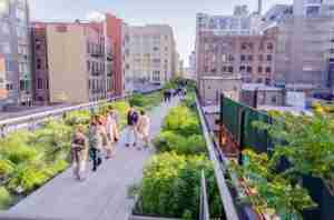 Visit the HighLine. Photo courtesy of Shutterstock.