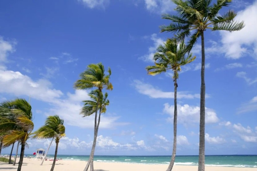Fort Lauderdale isn't as trendy as Miami, but it's definitely cheaper. Photo courtesy of Shutterstock.