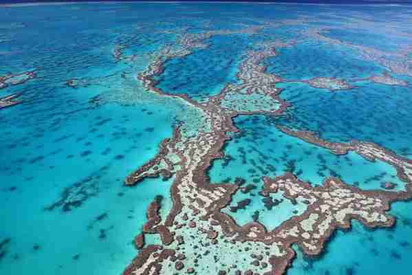 The Great Barrier Reef. (Photo courtesy Shutterstock.)