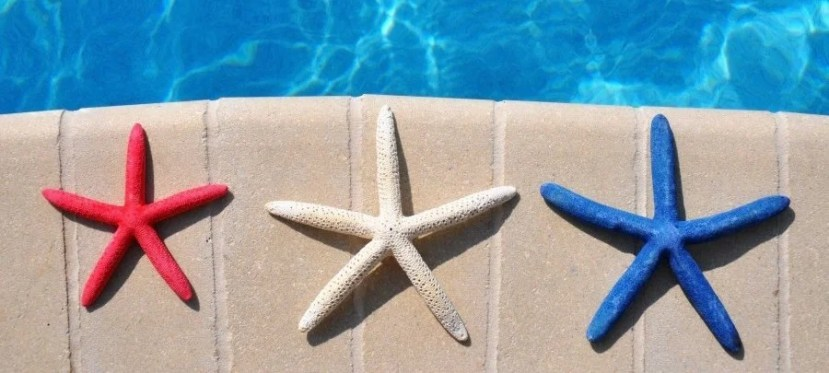 The companion certificate won't help you take a poolside vacation over Fourth of July weekend! Image courtesy of Shutterstock.