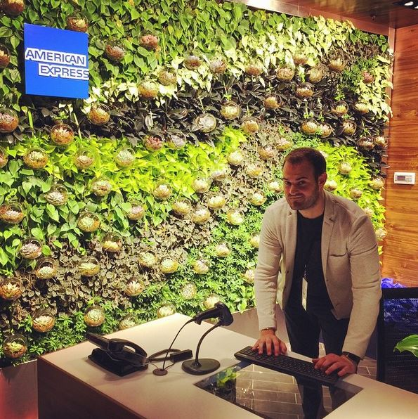 The plant wall at the new Miami Amex Centurion Lounge entrance.