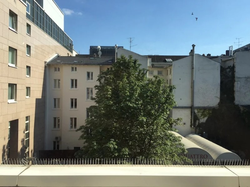 The view from my room.