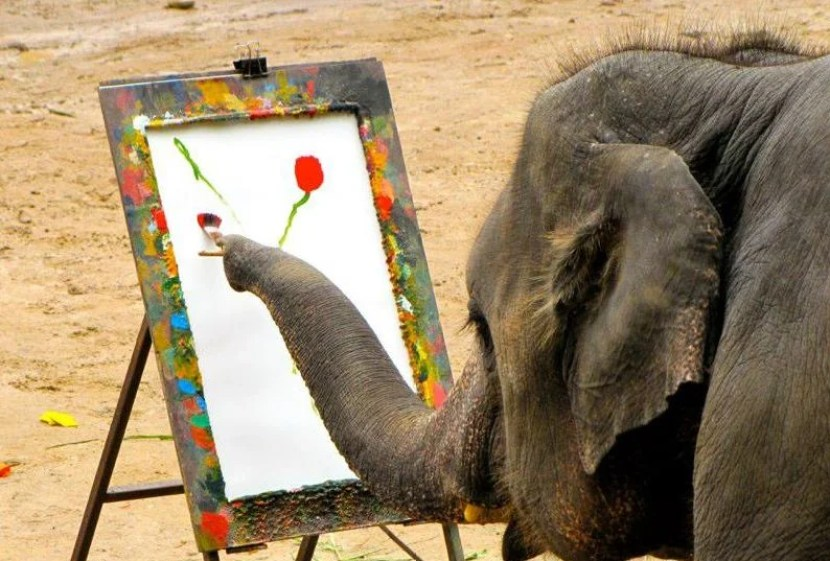 Elephant painting isn't as cool as it seems: elephants are cruelly trained to create these artistic shows. Photo courtesy of EARS.