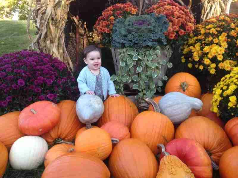 Evy was a big fan of the pumpkin display outside Orvis