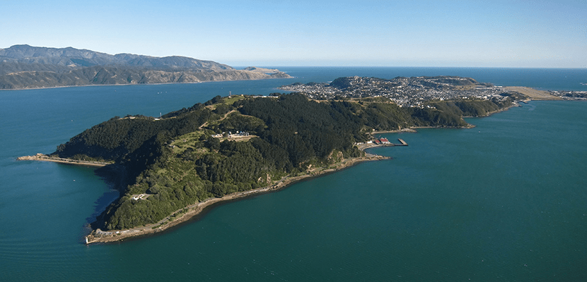 The Miramar peninsula is home to Wellywood, New Zealand
