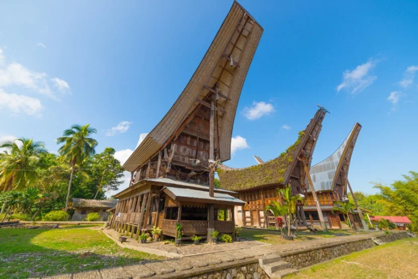 The famous boat-shaped houses of the Toraja people of Sulawesi. Photo courtesy of Shutterstock.