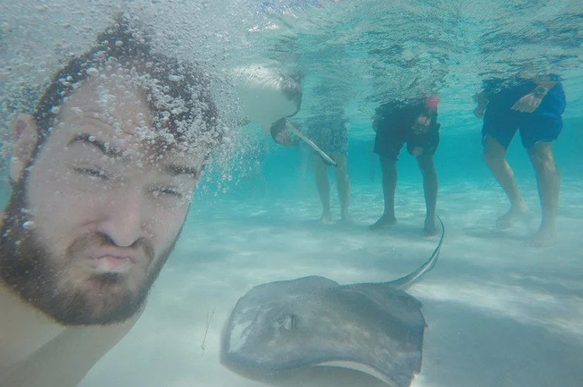Swimming with stingrays!