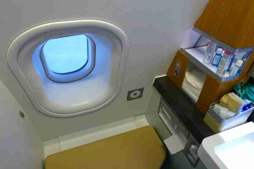 Most first-class lavatories have windows, regardless of the aircraft you
