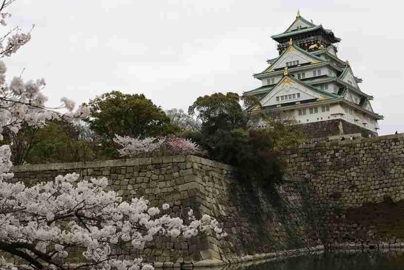 The Osaka Castle is stunning.