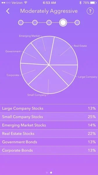A moderately aggressive portfolio puts a large chunk of money in equity.