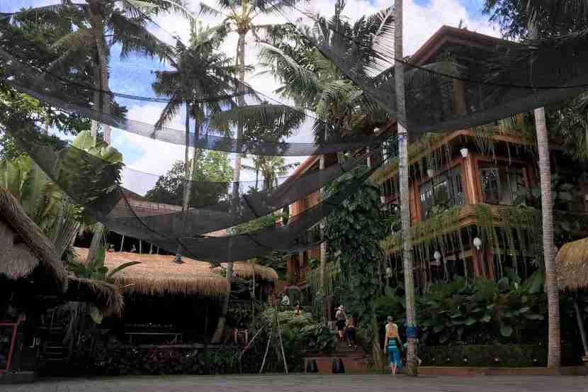With 15 classes daily, a tasty cafe and a jungle setting, it