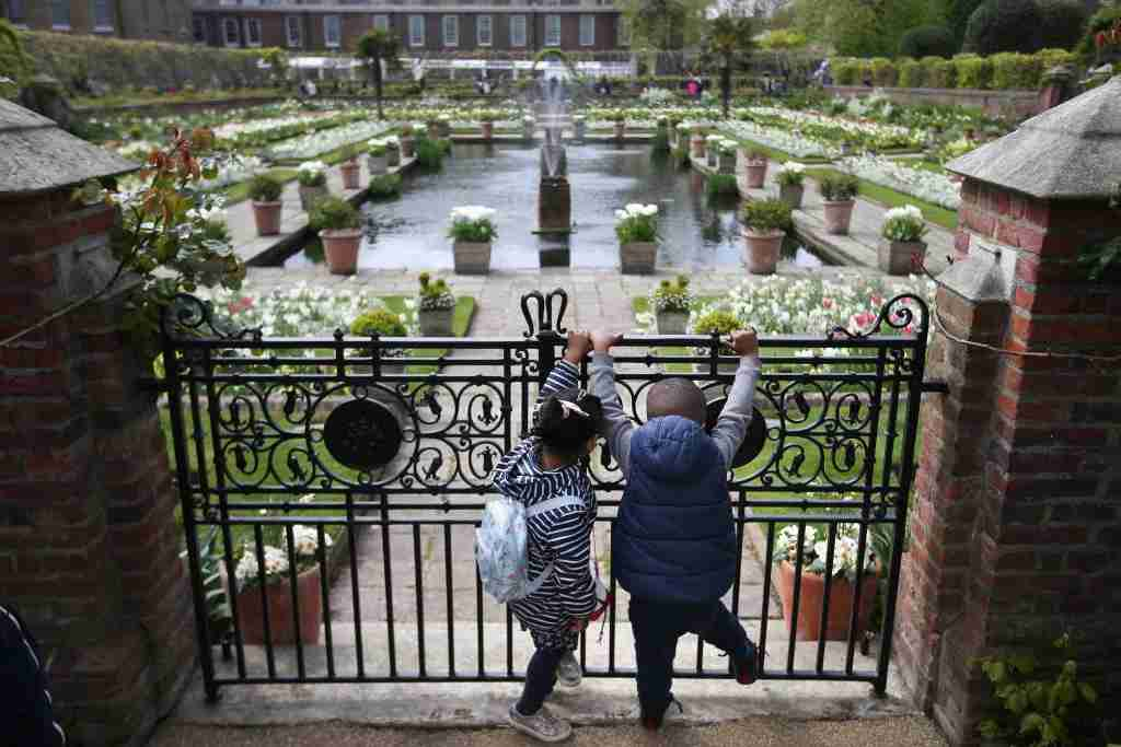 Children look over the fence outside the White Garden, created to celebrate the life of Diana, Princess of Wales, at Kensington Palace in north London on April 13, 2017. Formerly known as the Sunken Garden, the White Garden was created with thousands of white flowers and foliage to mark the 20th anniversary of the death of Diana, Princess of Wales in August 1997. / AFP PHOTO / Daniel LEAL-OLIVAS (Photo credit should read DANIEL LEAL-OLIVAS/AFP/Getty Images)