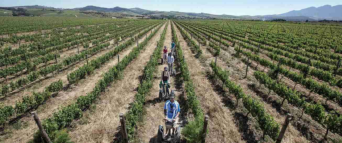 Combine segways and wine. Image courtesy of Spier Vineyards.