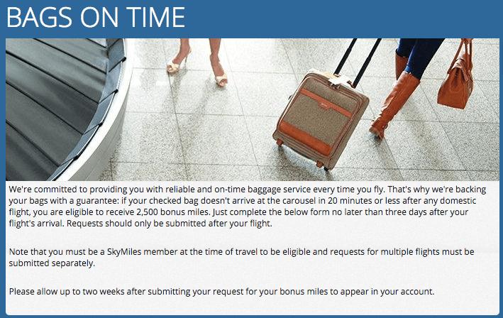 Delta Bag Guarantee landing page