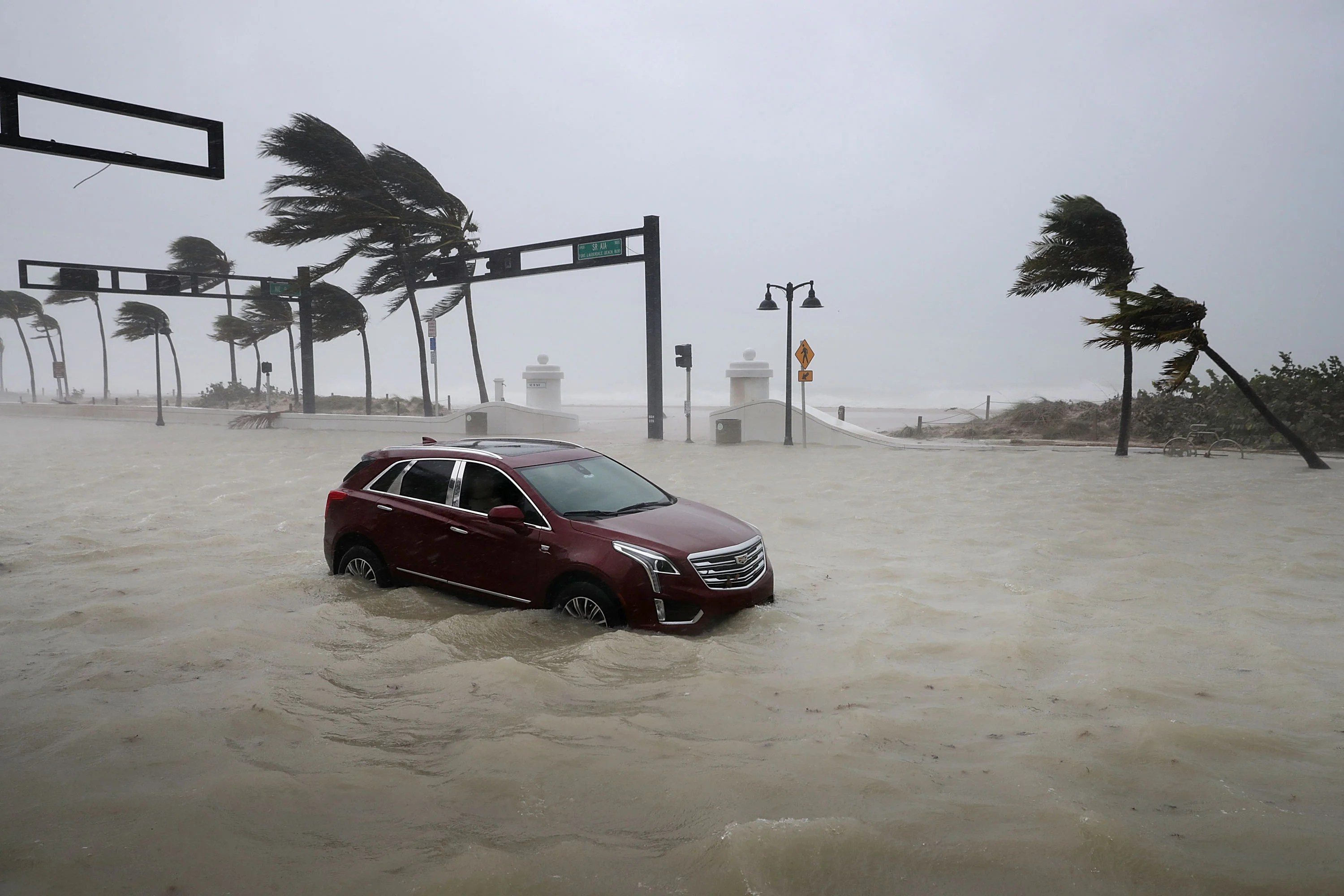 how credit card panies are helping customers after irma
