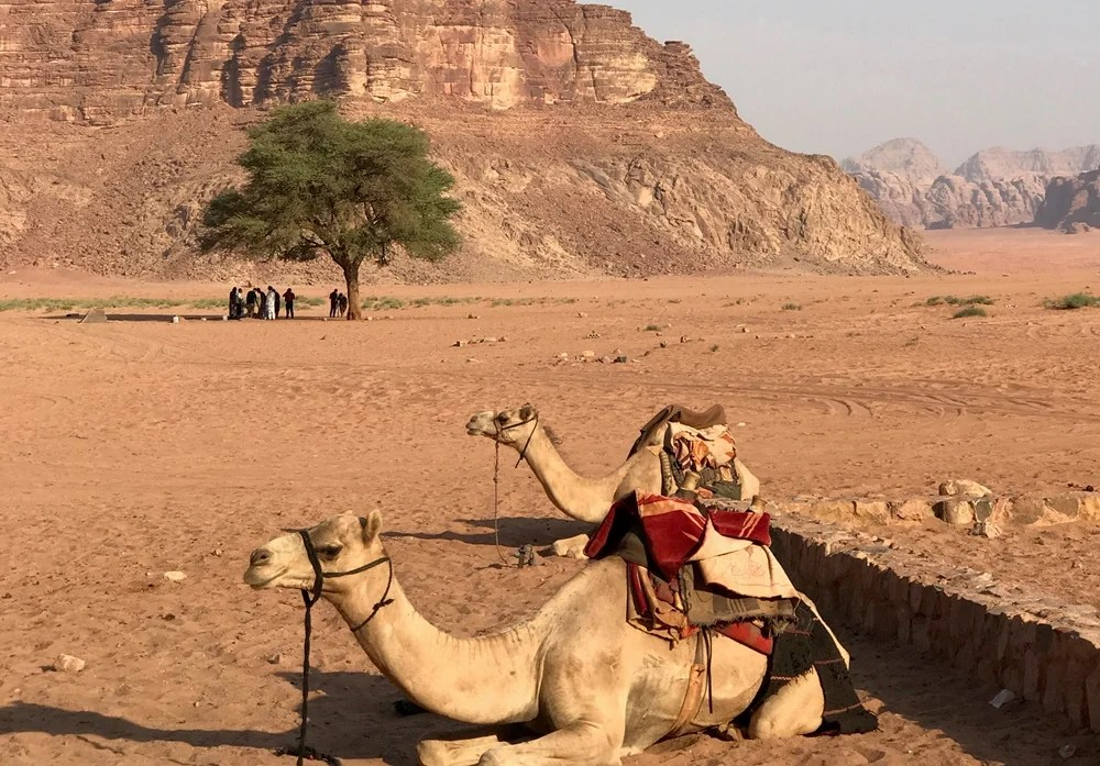 Wadi Rum is simply stunning.