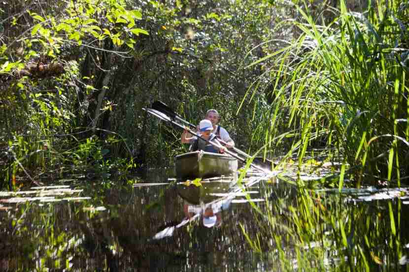 Father and son in a rowing boat, Everglades, Florida, USA. Photo by Stefanie Grewel