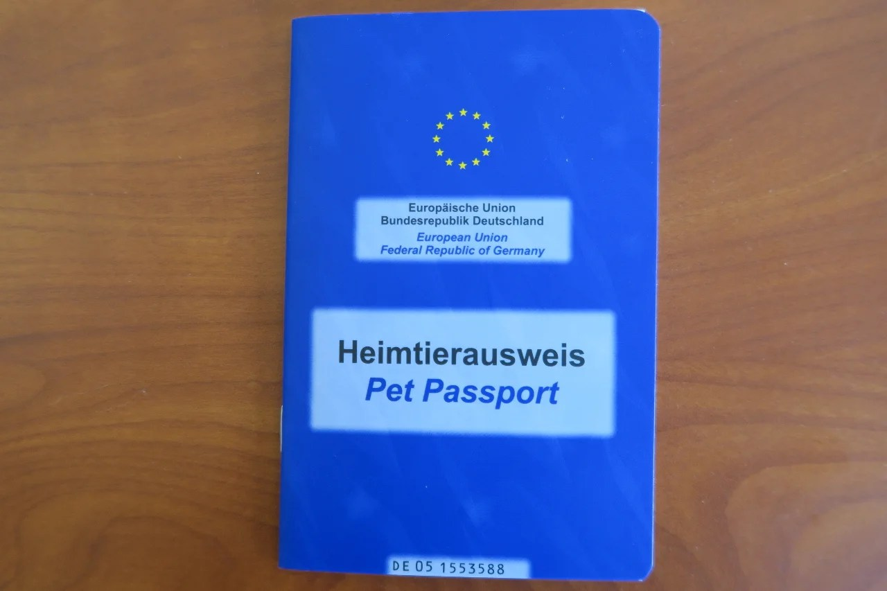How And Why To Get A European Union Pet Passport
