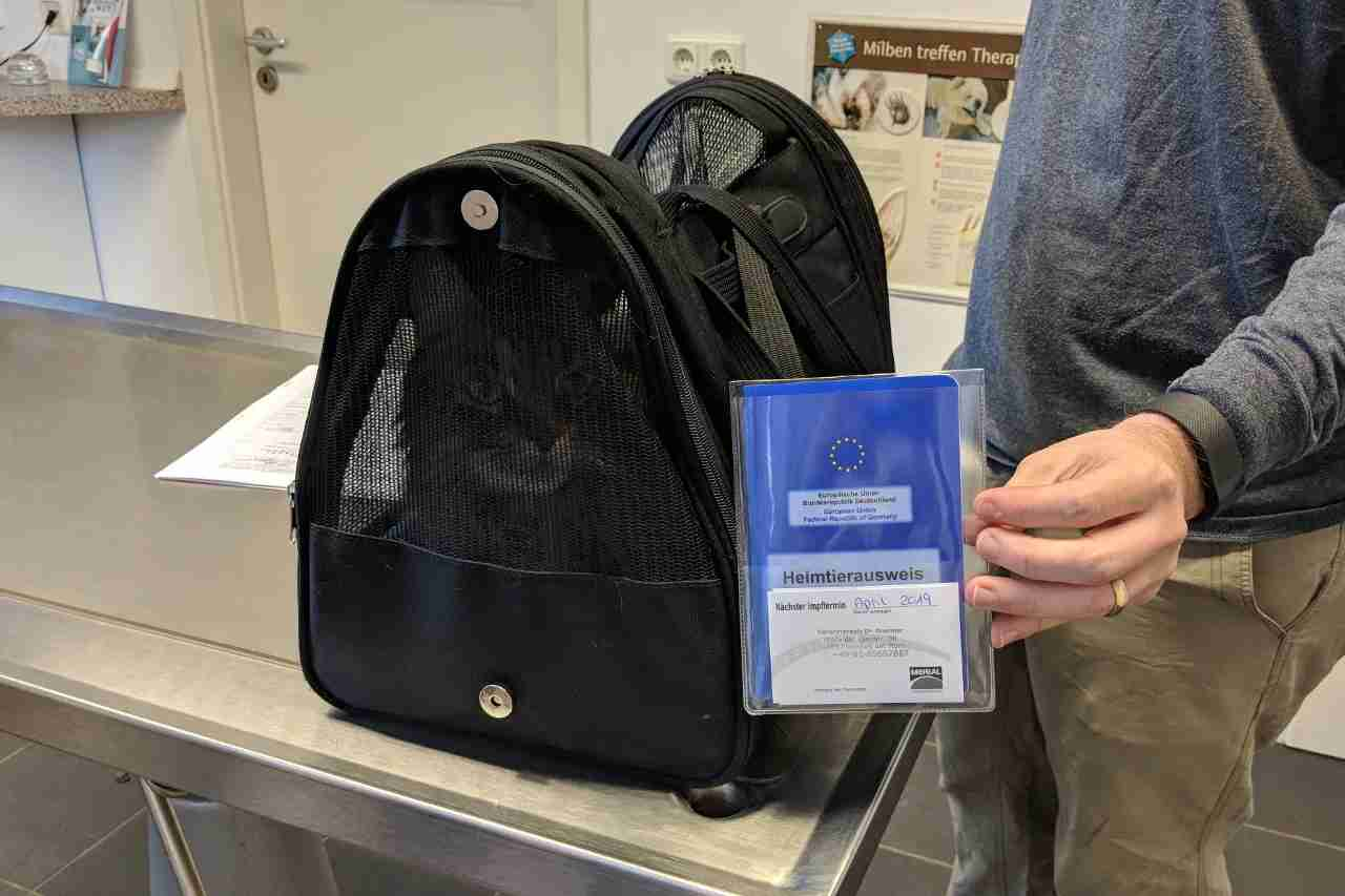 Grace with her new EU Pet Passport.