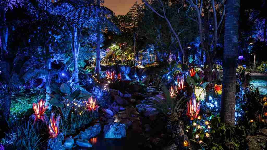 No need for flashlights on this camping trip. Pandora—The World of Avatar at night. (Photo courtesy of Disney)