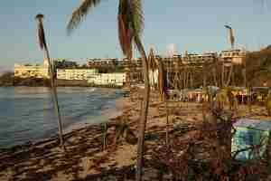 CHARLOTTE AMALIE, ST THOMAS, US VIRGIN ISLANDS - SEPTEMBER 18: Rafts of seaweed and broken trees on the beach at the Bolongo Bay Beach Resort more than a week after Hurricane Irma made landfall, on September 18, 2017 in Charlotte Amalie, St Thomas, U.S. Virgin Islands. With sustained winds of 150mph, Irma blew completely through the Tutu High Rise building, killing one woman when she was sucked out of her apartment. Hurricane Irma slammed into the Leeward Islands on September 6 as a Category 5 storm, killing four and causing major damage on the islands of St. John and St. Thomas. (Photo by Chip Somodevilla/Getty Images)