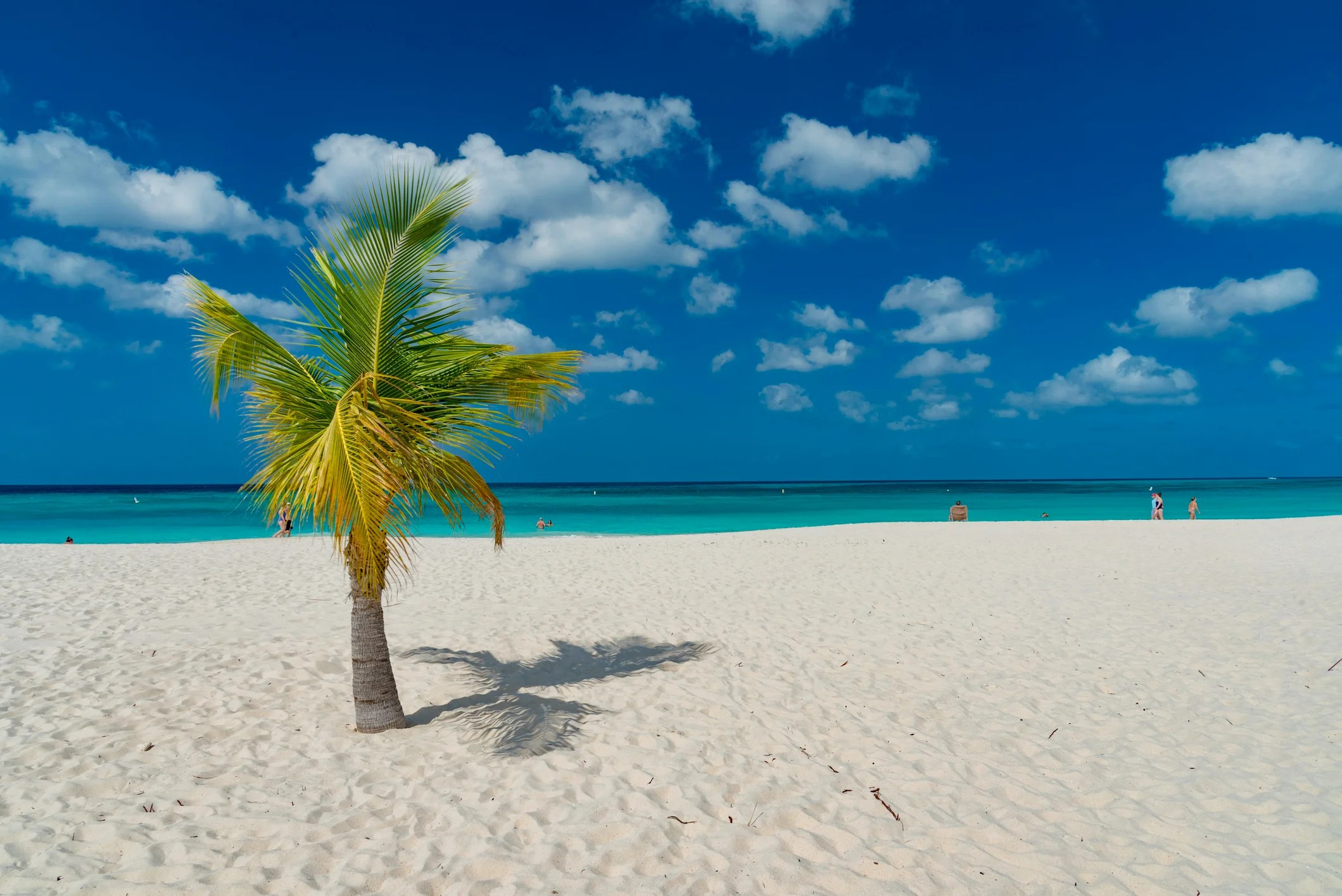 These Are the Best Times to Visit Aruba