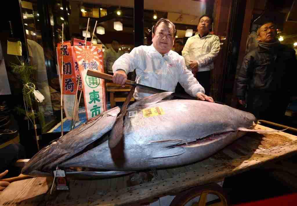 TOPSHOT - President of sushi restaurant chain Sushi-Zanmai, Kiyoshi Kimura, displays a 190-kilogram bluefin tuna at his main restaurant near Tokyo