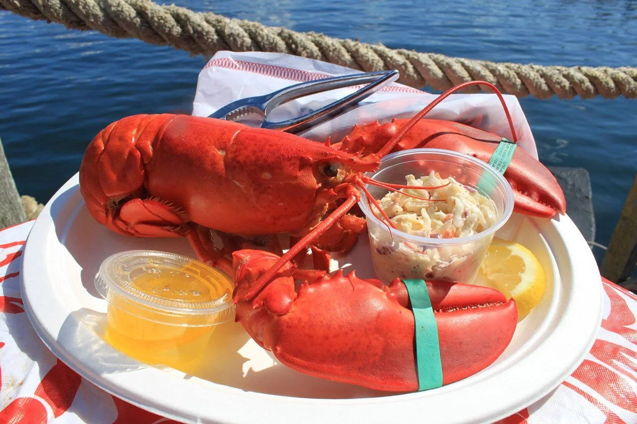 Photo courtesy of The Newport Lobster Shack.