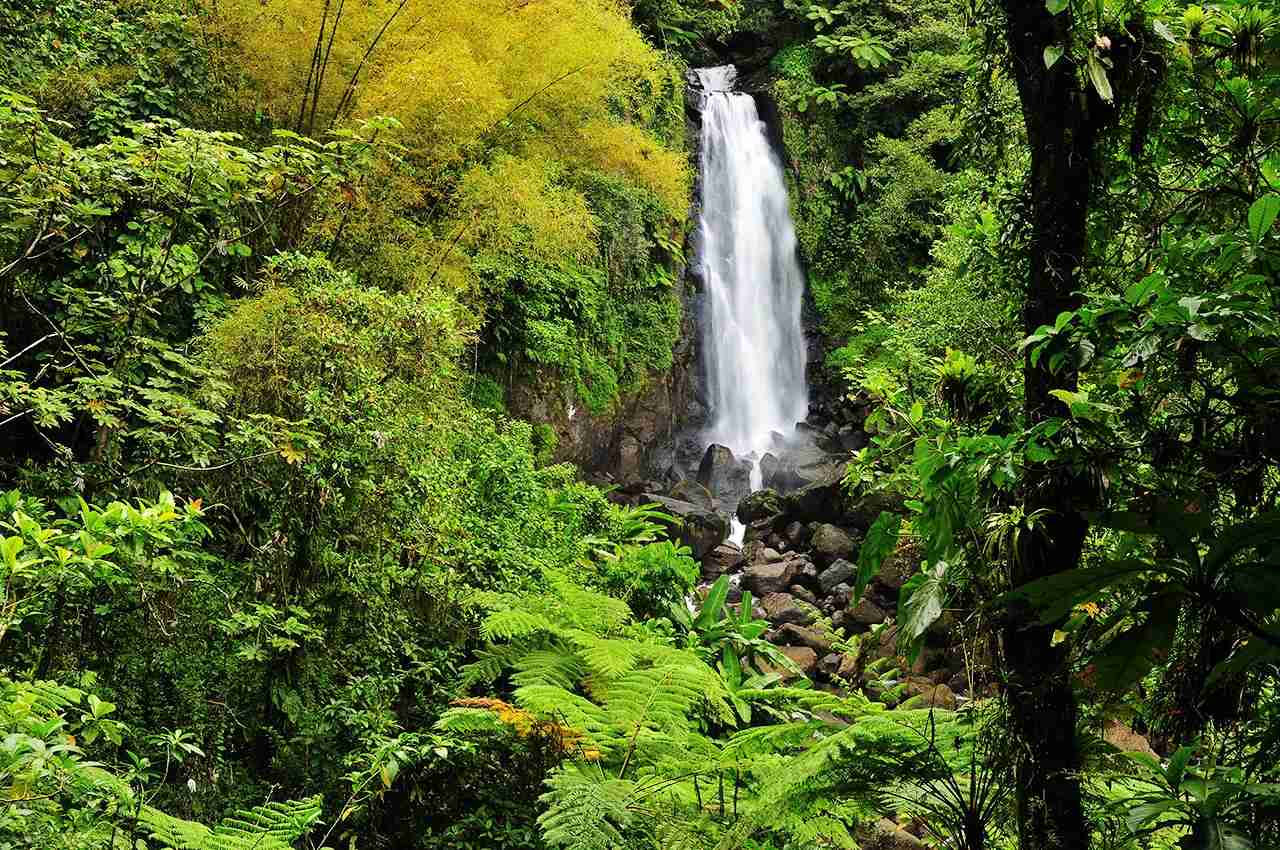 The beautiful lower Trafalgar Falls on the Caribbean island of Dominica. (Photo by goldistocks/Getty Images)