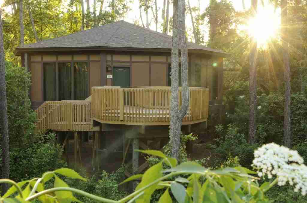 Disney Treehouse Villa (Photo courtesy of Disney, by Kent Phillips)