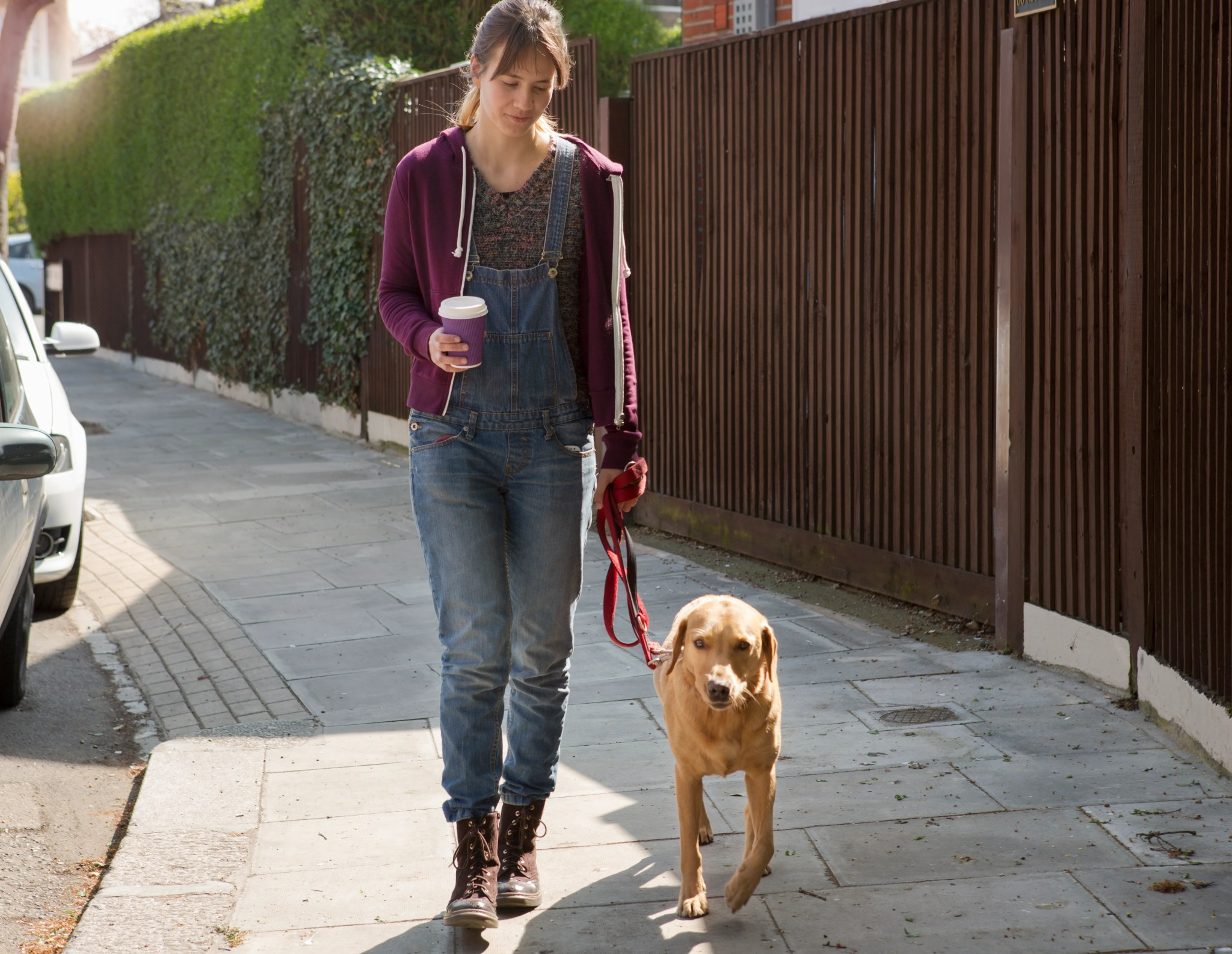 The Best Pet Sitting Options For Traveling Pet Parents