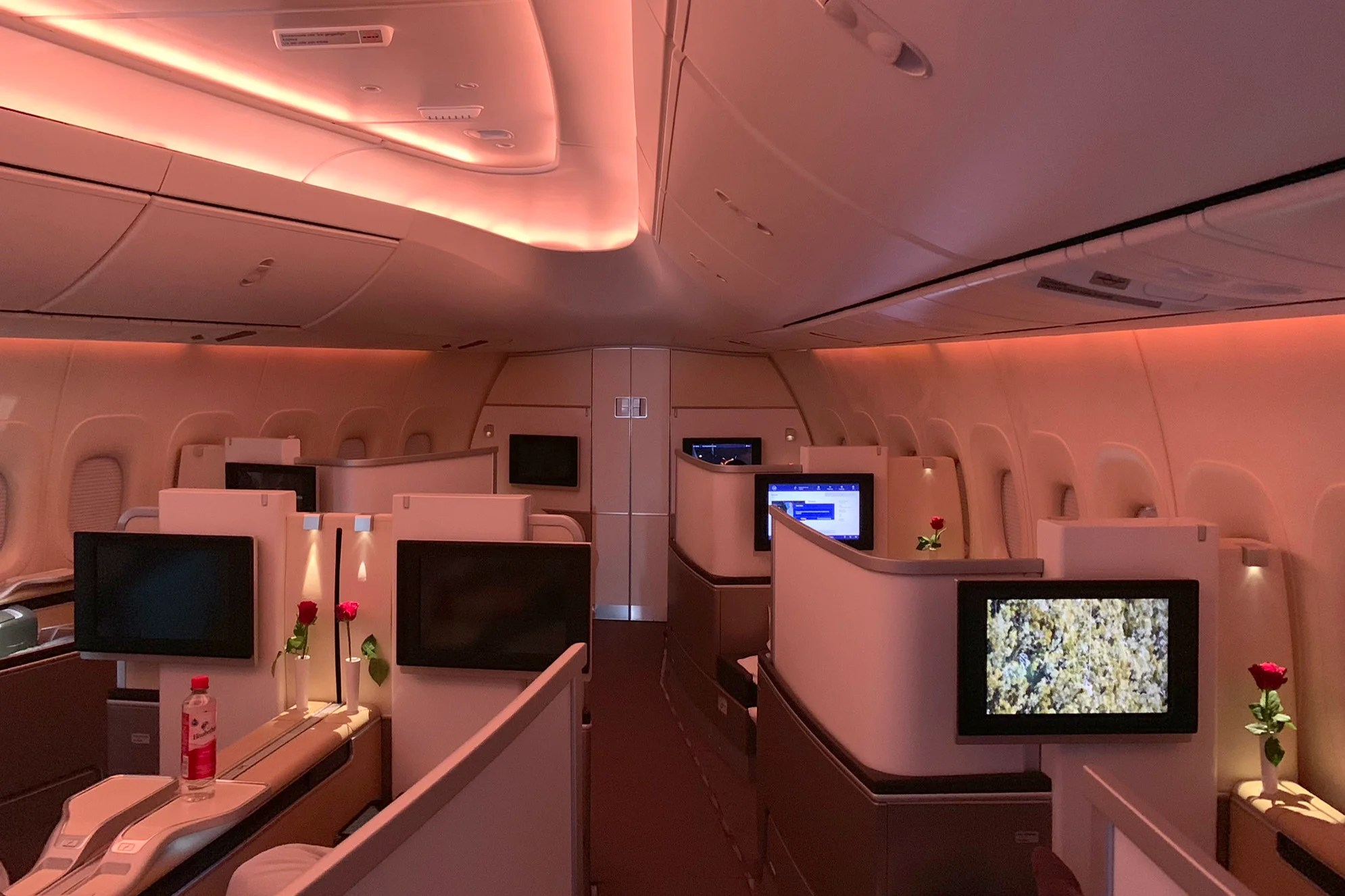 Near Perfection in the Nose: Lufthansa (747-8) in First Class From Frankfurt to Newark
