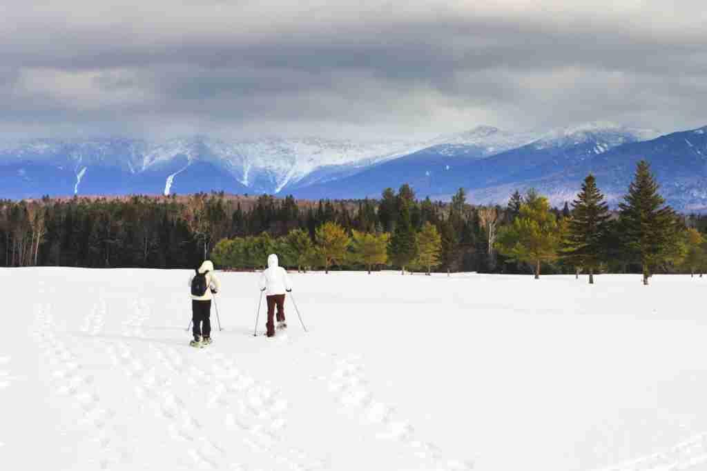 Bretton Woods Mountain in Bretton Woods, NH. (Photo via Shutterstock)