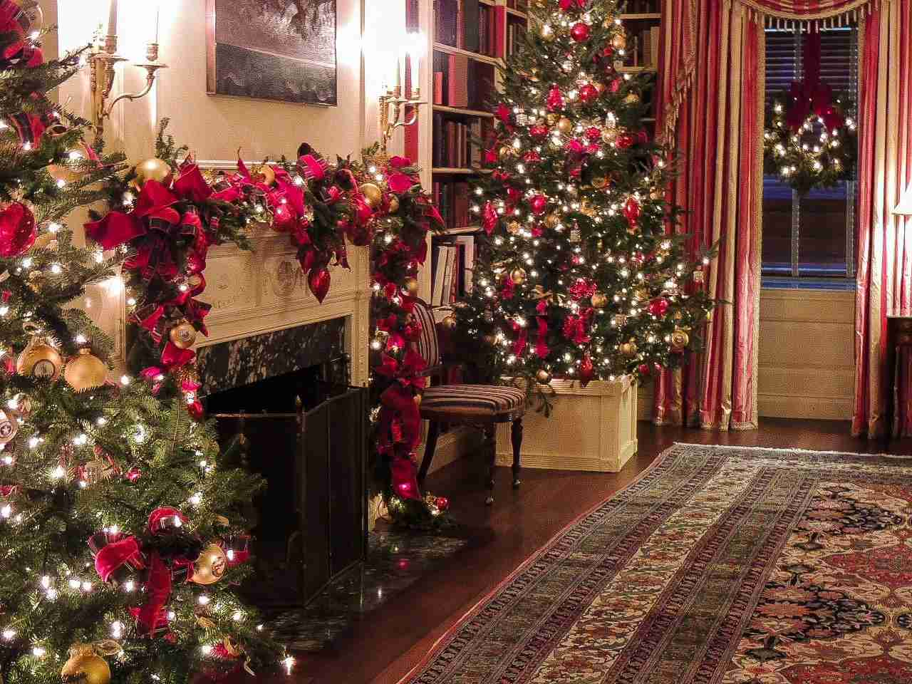 The White House Library at Christmas