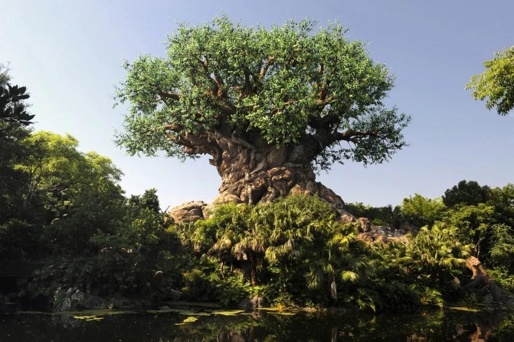 Disney Providing Bonus Food Credit With Seats to Animal Kingdom Show