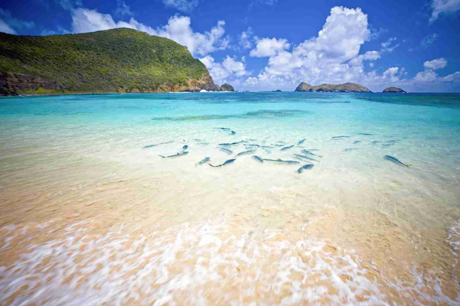 Lord Howe Island. (Photo via Shutterstock)