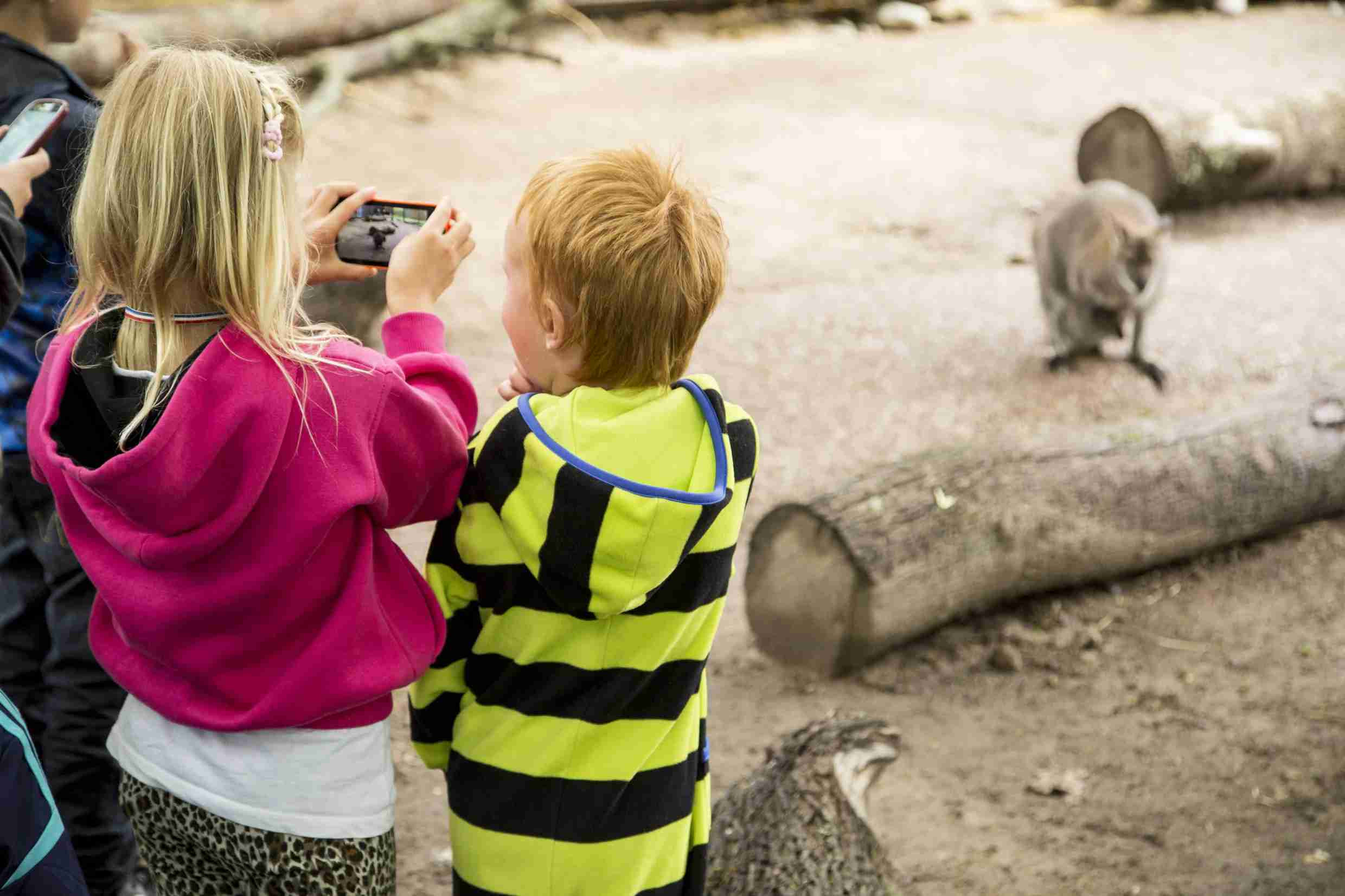 The Zoo in Helsinki is a great place for kids to enjoy the animals and run off some energy. (Photo courtesy of Mari Lehmonen)