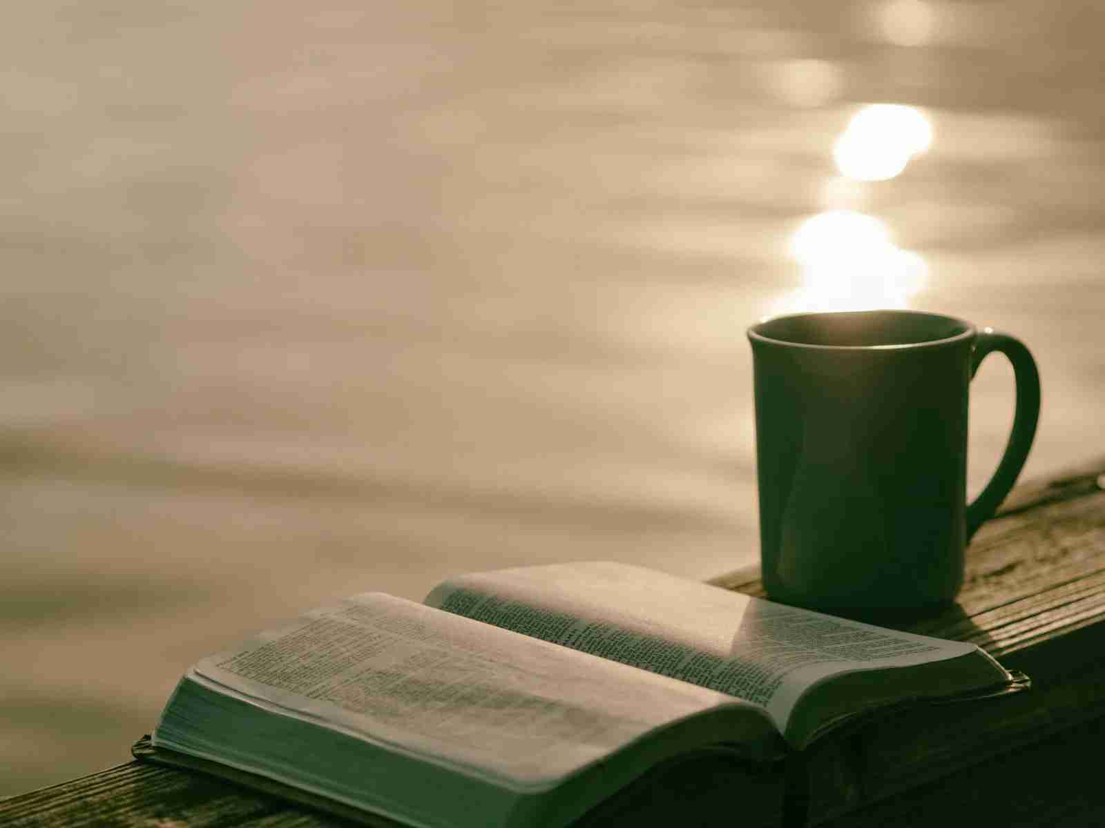 Coffee Cup Book by Lake