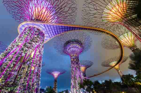 Garden by the bay,Singapore