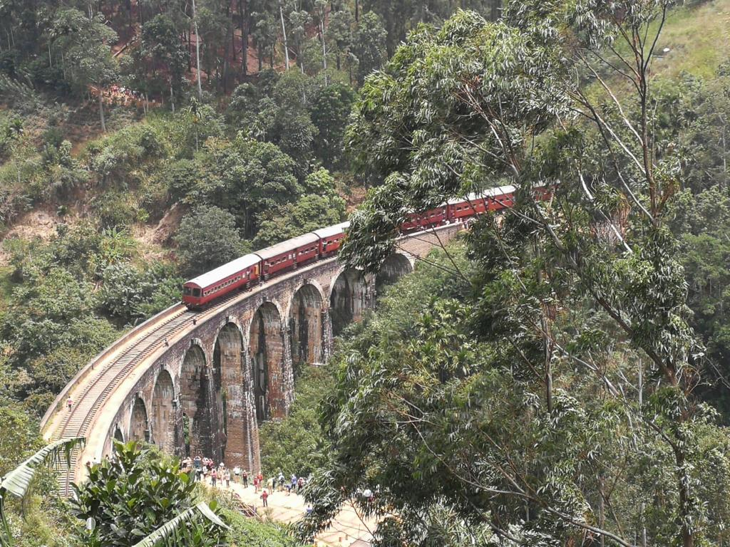 A train crosses the Nine Arches Bridge in Sri Lanka. Photo by Lori Zaino.
