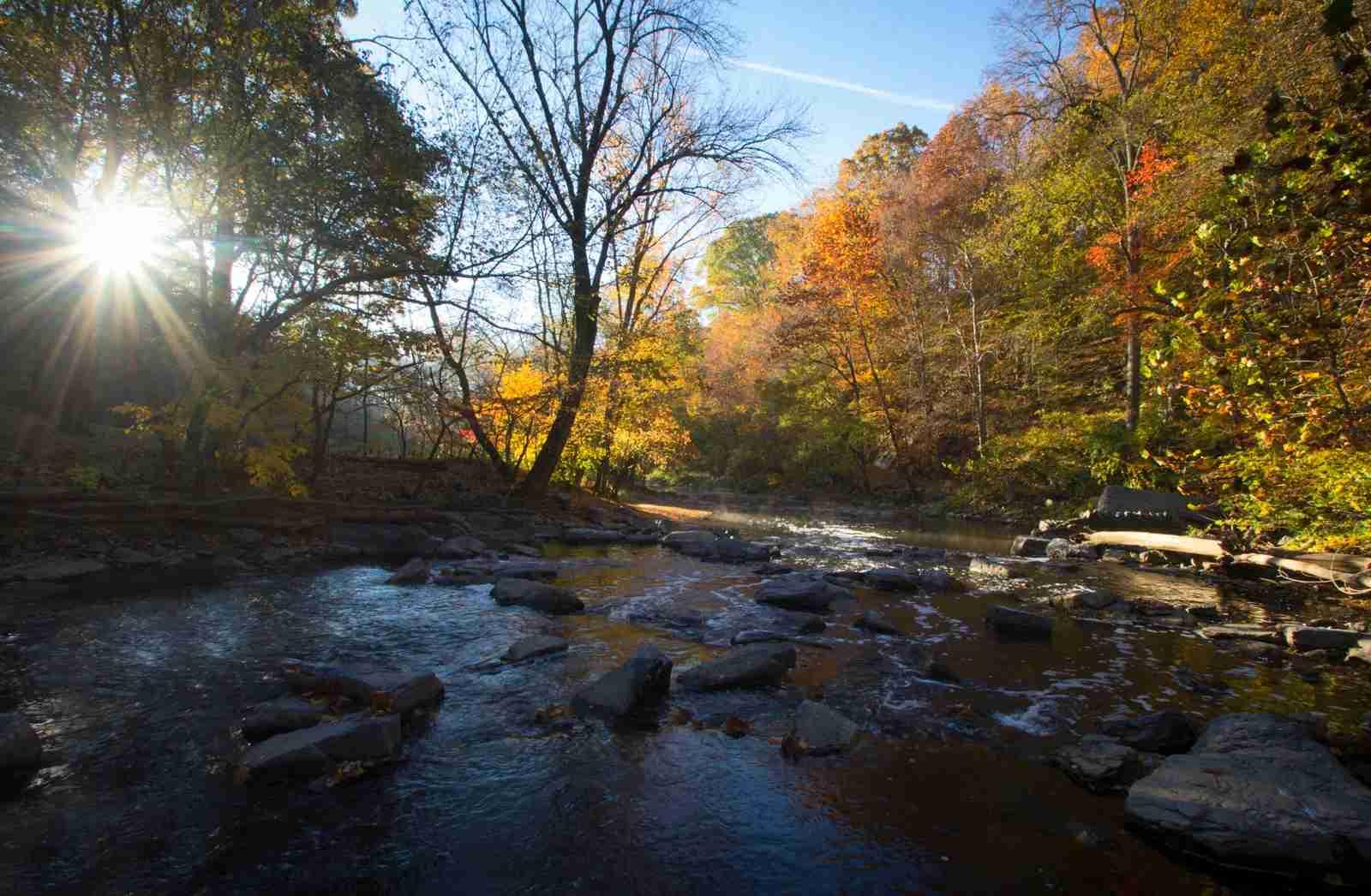 Rock Creek Park, Washington DC. (Photo by WLDavies / Getty Images)